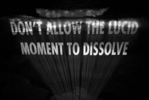 Jenny Holzer: Don't Allow the Lucid Moment to Dissolve (2007)